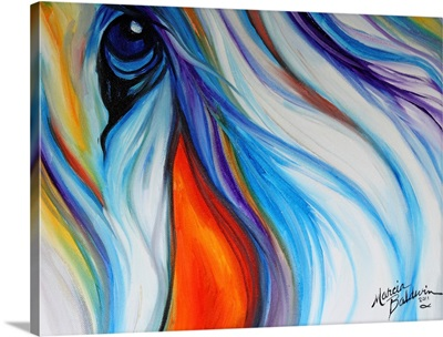 Equine Abstract Eye Of Compasion