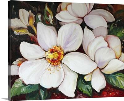 Magnolias 2024