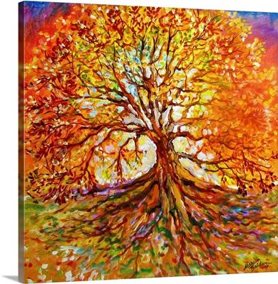 Tree Of Life Autumn Sunset