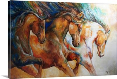 Wild Trio Run Mustangs