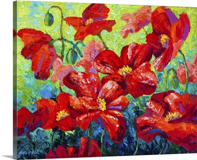 Field of Red Poppies II