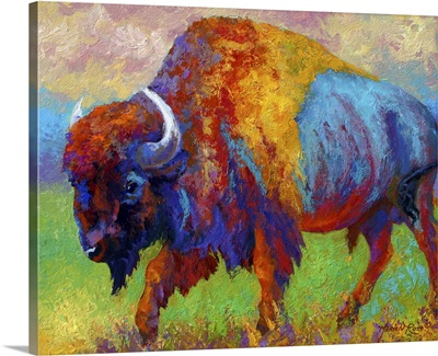 Journey Unknown Bison
