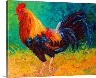 Mr Big Rooster