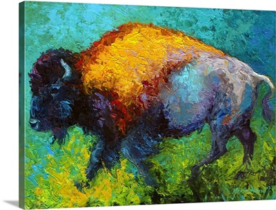 On The Run Bison