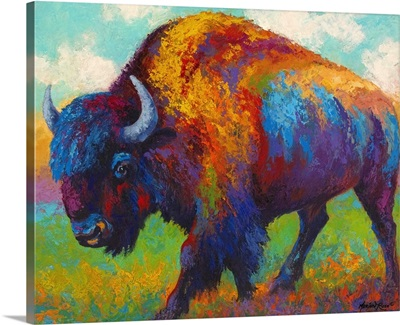 Prairie Muse Bison