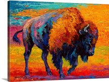 Spirit of Prairie Bison