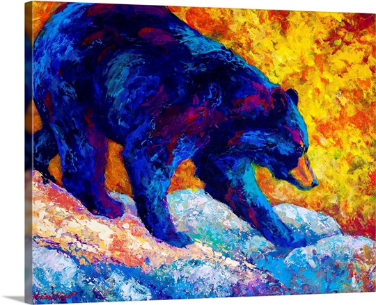 Tentative Step Black Bear Wall Art, Canvas Prints, Framed Prints ...