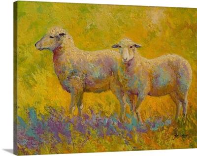 Warm Glow Sheep Pair