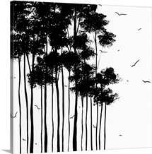 Falls Design 1 - Black and White Landscape