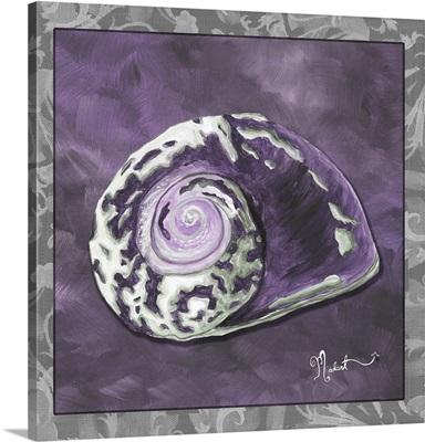 Royal Sea Snail