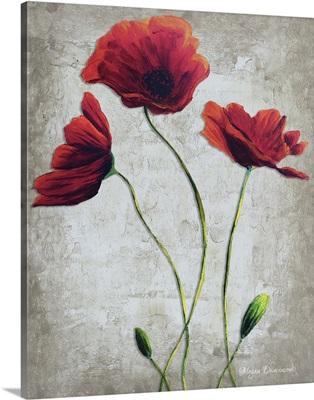 Vibrant Poppies I