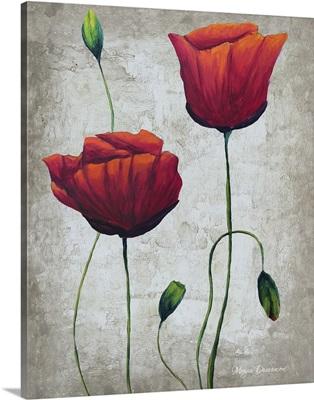 Vibrant Poppies III