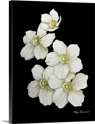 White Flower Set I