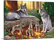 A family of wolves I