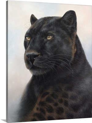 Black Leopard Portrait