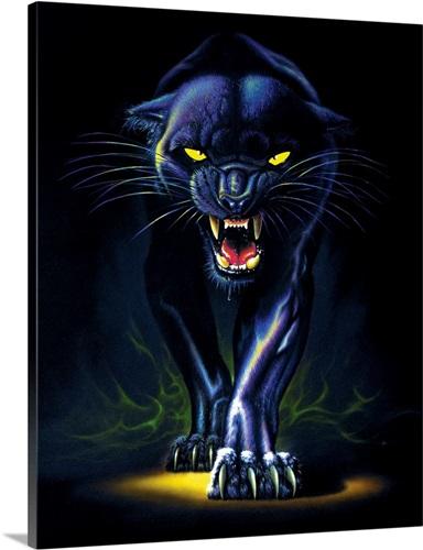 Henri The Black Cat