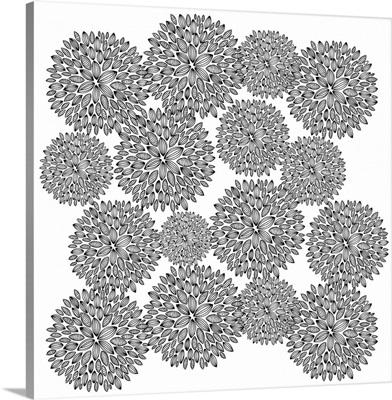 Dandelions - Black and White