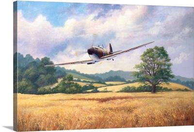 English summer spitfire MK1