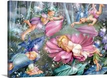 Evening Fairies
