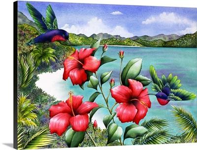 Hibiscus hummers