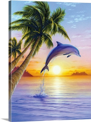 Morning Dolphin