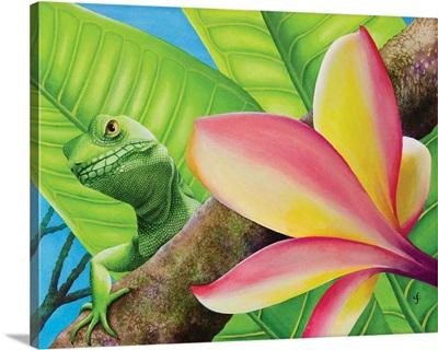 Peekaboo Lizard