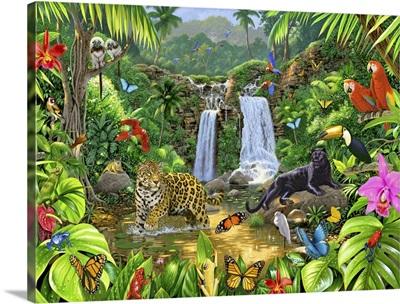 Rainforest Harmony I