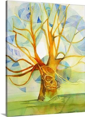 Shroton field tree