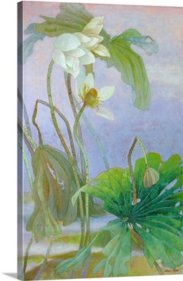 The Rise of White Lotus