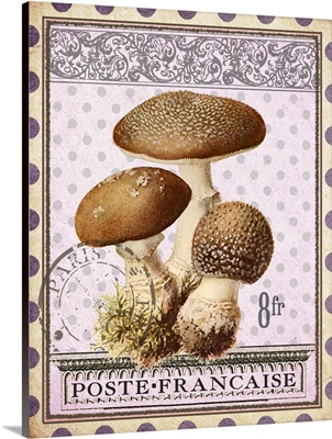 Timbres Champignons - Vertical II