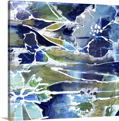 Blue/White Flowers
