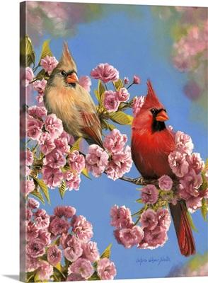 Cardinal Quartet