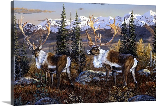 Caribou Wall Art Canvas Prints Framed Prints Wall Peels Great Big Canvas