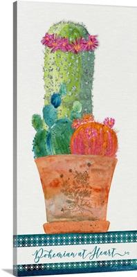 Colorful Cactus 3