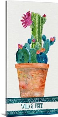 Colorful Cactus 4