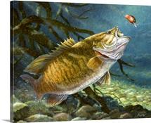 Deep Water Prowler