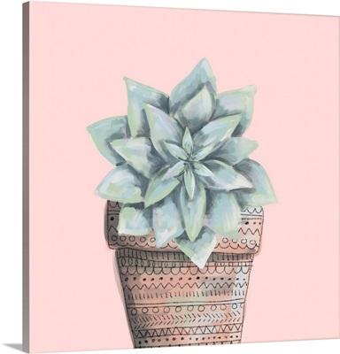Desert Succulent 9