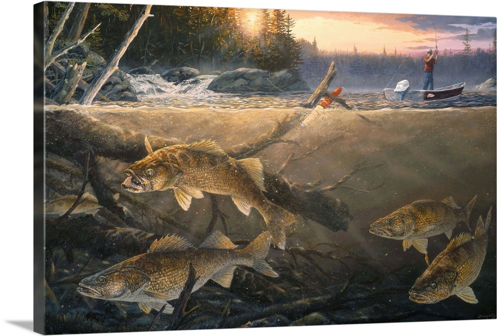 Walleye In The Wood Wall Art Canvas Prints Framed Prints