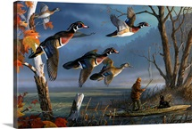 Woodies on the Wing