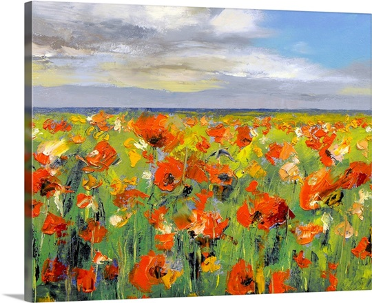 Poppy Field with Storm Clouds