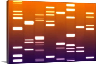 DNA Art Orange Purple