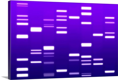 DNA Art Purple
