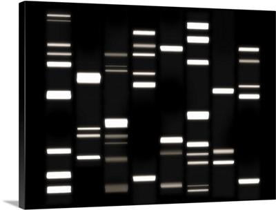 DNA Art White on Black