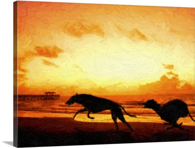 Greyhounds on Beach at Sunset