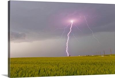 Lightning storm produces intense purple lightning bolt over a field