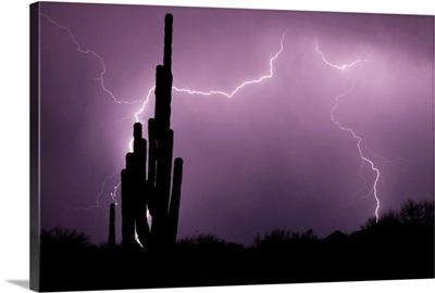 Lightning strikes in the desert during monsoon season in Arizona