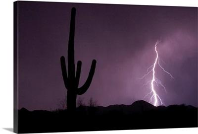 Single lightning bolt strikes in the desert during monsoon season