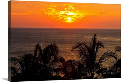 Sunset over the Caribbean Sea and silhouetted palm trees