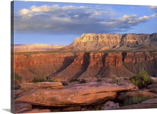 Aubrey Cliffs from Toroweap Overlook, Grand Canyon National Park, Arizona