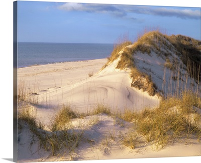Coastal sand dunes, Saint Joseph Peninsula, Florida